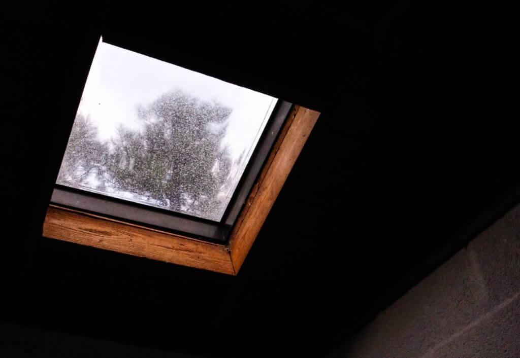 fire escape windows
